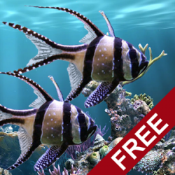 The real aquarium LWP v1.14