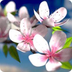 Spring Flowers 3D Parallax v1.0.2