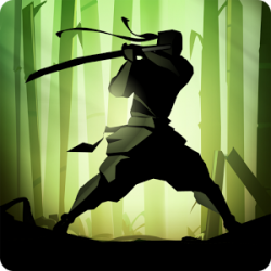 Shadow Fight 2 v1.9.29
