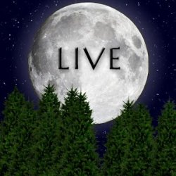 Moonlight Live Wallpaper v1.15
