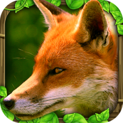 Fox Simulator v1.0