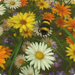 Bee Live Wallpaper HD v1.0